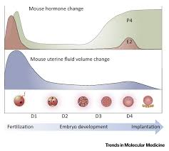 uterine fluid in pregnancy a biological and clinical outlook
