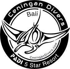 padi advanced open water course ceningan divers