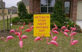 U0027s Day Yard Bouquets Are Here Flamingos 2 Go