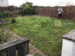 garden services grass cutting gardener winter clearances in