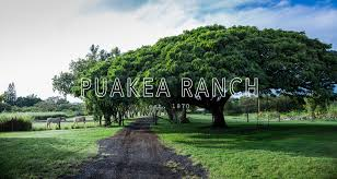 home puakea ranch