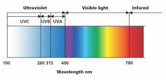 Blue Light Wavelength Are Uv Tests Enough For A Sun Protection Claim