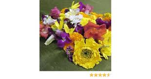 Where To Buy Edible Flowers - melissa u0027s assorted edible flowers 40 50 ct amazon com grocery