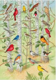 interactive bird poster the bird songs are from the cornell lab