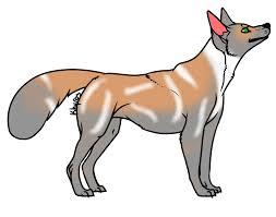 australian shepherd wolf mix view topic pol take us home 54 free characters code drop