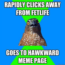 Hawkward Meme - collection of meme page 4 memes shakespeare and popular culture