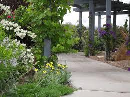 Colorado Botanical Gardens Western Colorado Botanic Gardens Grand Junction Plant Select