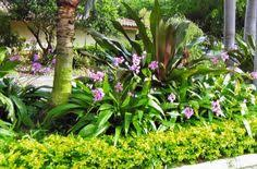 Front Yard Landscaping Ideas Florida Landscaping Ideas For Front Yard In South Florida Foodies