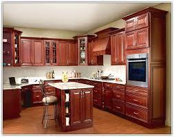 Kitchen Cabinets Michigan Kitchen Cabinets Michigan Fancy Plush Design 16 28 In Hbe Kitchen
