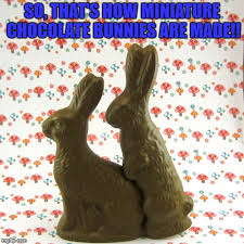 Chocolate Bunny Meme - so that s how miniature chocolate bunnies are made meme