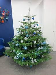 Blue And Silver Christmas Tree - christmas christmas tree decorated in blue and silver