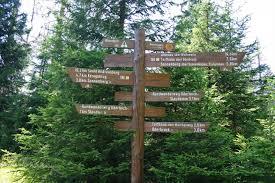 Baden Im Harz Tour 6 Rundwanderweg Oderteich W6 Natur Erleben