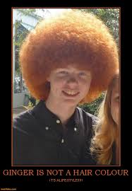 Meme Red Hair Kid - no but red is the very rare red afro they are so rare you must