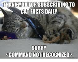 Cat Facts Meme - thank you forsubscribing to cat facts daily sorry kcommand not