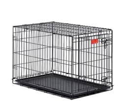 australian shepherd kennel size what size crate should i buy for new aussie male puppy wigglebutts