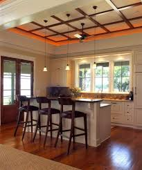 Raised Kitchen Island Fabulous Raised Bar Kitchen Traditional With Prep Sink Stainless