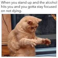 Memes Alcohol - 56 hilarious drinking memes to make you laugh gallery ebaum s world