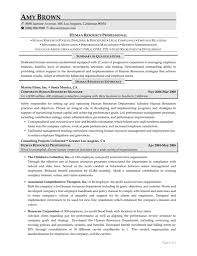 Resume Samples Non Profit by Cover Letter Executive Director Sample Resume For Hr Samples Tem