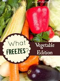 how to freeze garden vegetables freezer gardens and food
