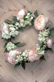 peonies flowers peonies