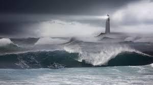 Sea Storm Hd Wallpapers Costantino Polesel Bodybuilder Photos