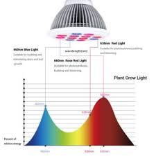 red and blue led grow lights led grow lights review tomato growing