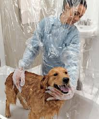 Make Bathtime Fun For Your Dog 40 Useful And Creative Ideas Every Pet Lover Should Try