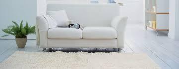 blutflecken entfernen sofa blutflecken auf dem sofa entfernen hausmittel