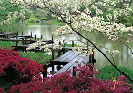 imagenes de jardines japones el jardín japonés de buenos aires joya life