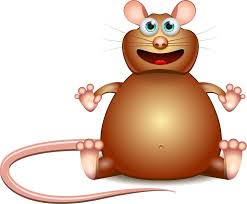 human gut bacteria mice slim fat realclearscience