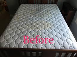 Upholstery Shampoo For Mattress Avs Progressive Inc Carpet U0026 Upholstery Cleaning
