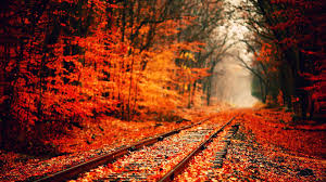 cute fall wallpapers autumn desktop wallpaper page 2 of 3 hdwallpaper20 com