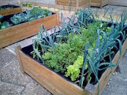 Small Urban Gardens Urban Gardening Ideas For Small Spaces Turning The Clock Back
