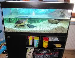 Wohnzimmertisch Aquarium Sandfall Für Aquarium Kaufen Verkleidung Neu Und Gebraucht Kaufen