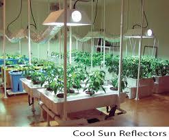 Indoor Vegetable Container Gardening - 15 best indoor gardening images on pinterest indoor gardening