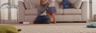 Adelaide Upholstery Cleaning Carpet Cleaning Adelaide U0026 Carpet Cleaner O U0027shea U0027s