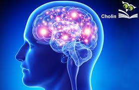 konzentrationsschwäche medikamente konzentrationsschwäche gesundbuch verlag