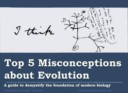 molecular life sciences u2014 top 5 misconceptions about evolution a