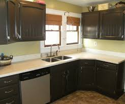 ideas for painting kitchen cabinets photos stunning kitchen cabinet painted ideas paint picture for styles