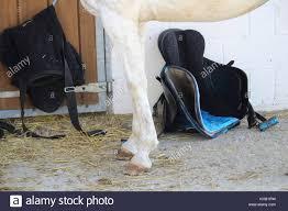 international horse show stock photos u0026 international horse show