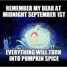 Pumpkin Spice Meme - laurie l on
