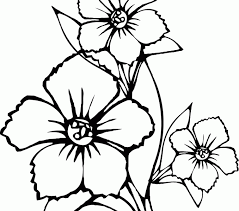 colouring flowers print color model gallery coloring