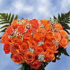 global roses dozen roses orange global
