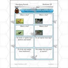identifying animals ks1 animals complete series