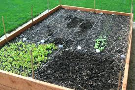 building a vegetable garden row covers the garden inspirations