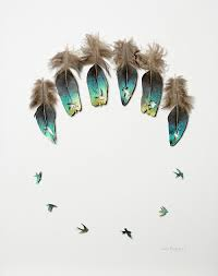 feathers form and function new cut feather artwork by chris