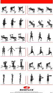 bowflex workout chart pdf eoua blog