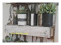 baum fã r balkon fresh dekorative pflanzen fürs wohnzimmer alex books