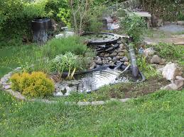 diy u2013 build a natural fish pond in your backyard growing food