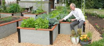 Lifetime Raised Garden Bed Raised Garden Beds Cost Comparison Durable Greenbed